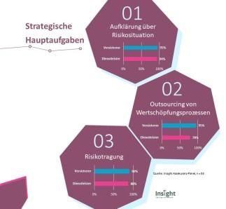 Insight_strategische Hauptaufgaben